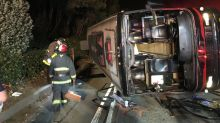 Chartered bus overturns on freeway, injuring 29