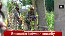 Encounter between security forces and terrorists in Kulgam's Chadder area