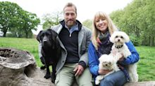 ITV just aired a two-hour programme on dogs