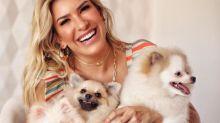 Lorena Improta mostra pets de amigos famosos e fala do 'não abandono' em clipe