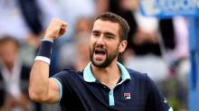 Gentle giant Cilic profits from new aggressive streak