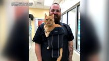 15-year-old shelter cat that loves being held finds forever home