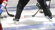 Hockey - LDC - Coronavirus: lancement encore retardé pour la Ligue des Champions