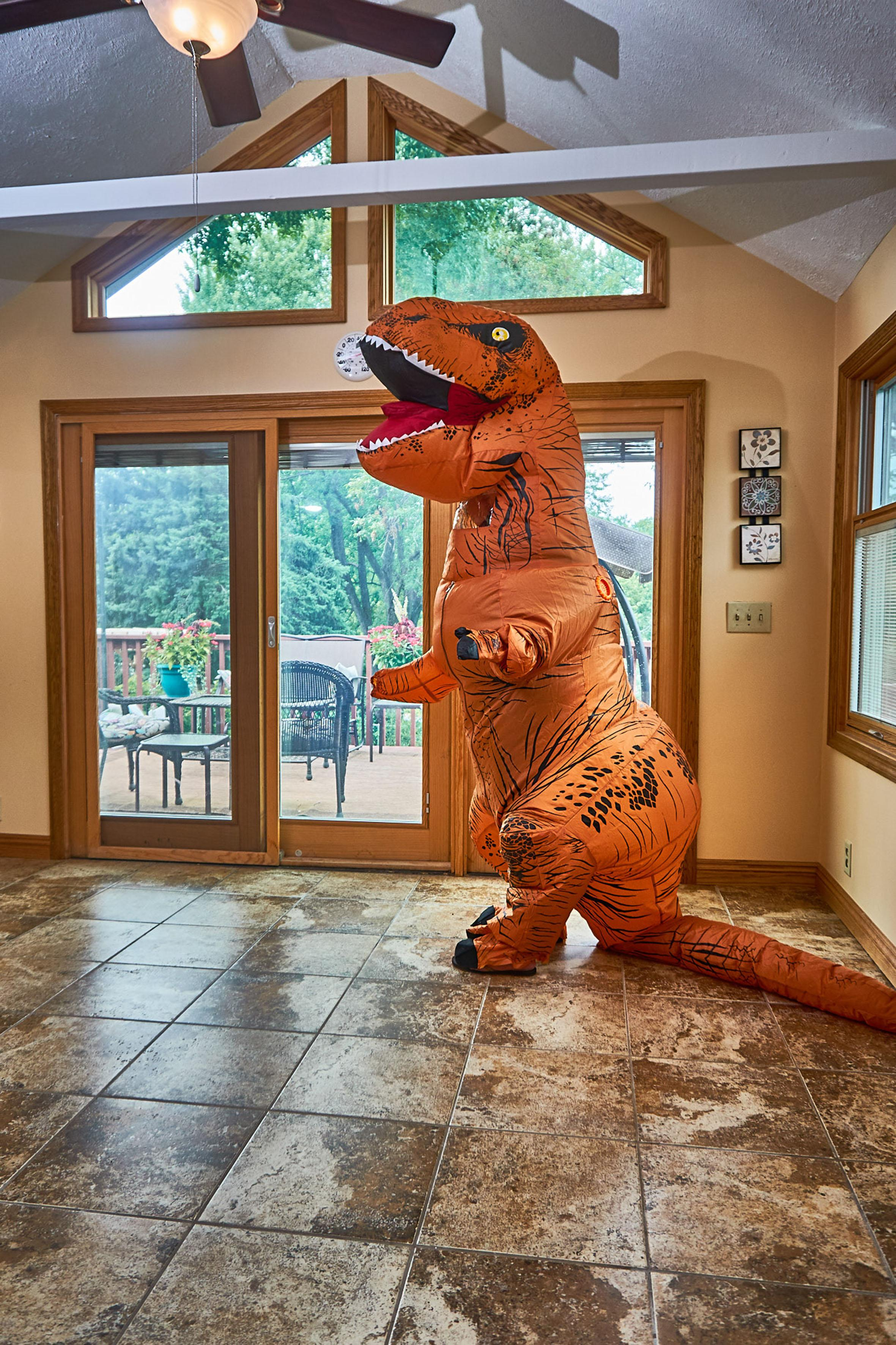 <p>And so, after her husband had bought her the costume for Christmas, she tried it out. (Photo: Nebraska Realty/Caters News) </p>