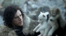 Direwolf theories: everything we know about Ghost and Nymeria in Game of Thrones