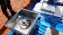 Asteroid sample arrives in Japan after six-year space odyssey