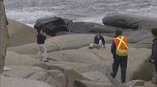 The case for bringing rock patrollers back to Peggys Cove