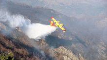 Gard : Un écobuage tourne mal, une vingtaine d'hectares de forêt part en fumée