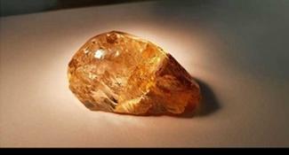 挖到億年史上最大1顆 全球搶要