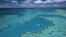 L'Australie envisage de déverser un million de tonnes de boues près de la Grande Barrière de corail