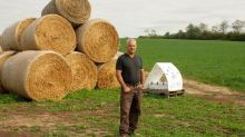 Canadian company enlists bees to deliver crop protection, plans rapid expansion
