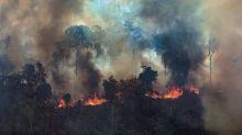 Ente indígena de la Amazonía declara no gratos a Brasil y Bolivia y pide una sanción