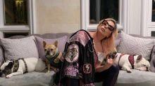 Lady Gaga no fue blanco específico del robo de sus bulldogs franceses, dice la policía