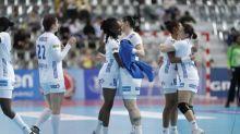 Hand - Bleues - Équipe de France féminine: un calendrier inchangé en 2020