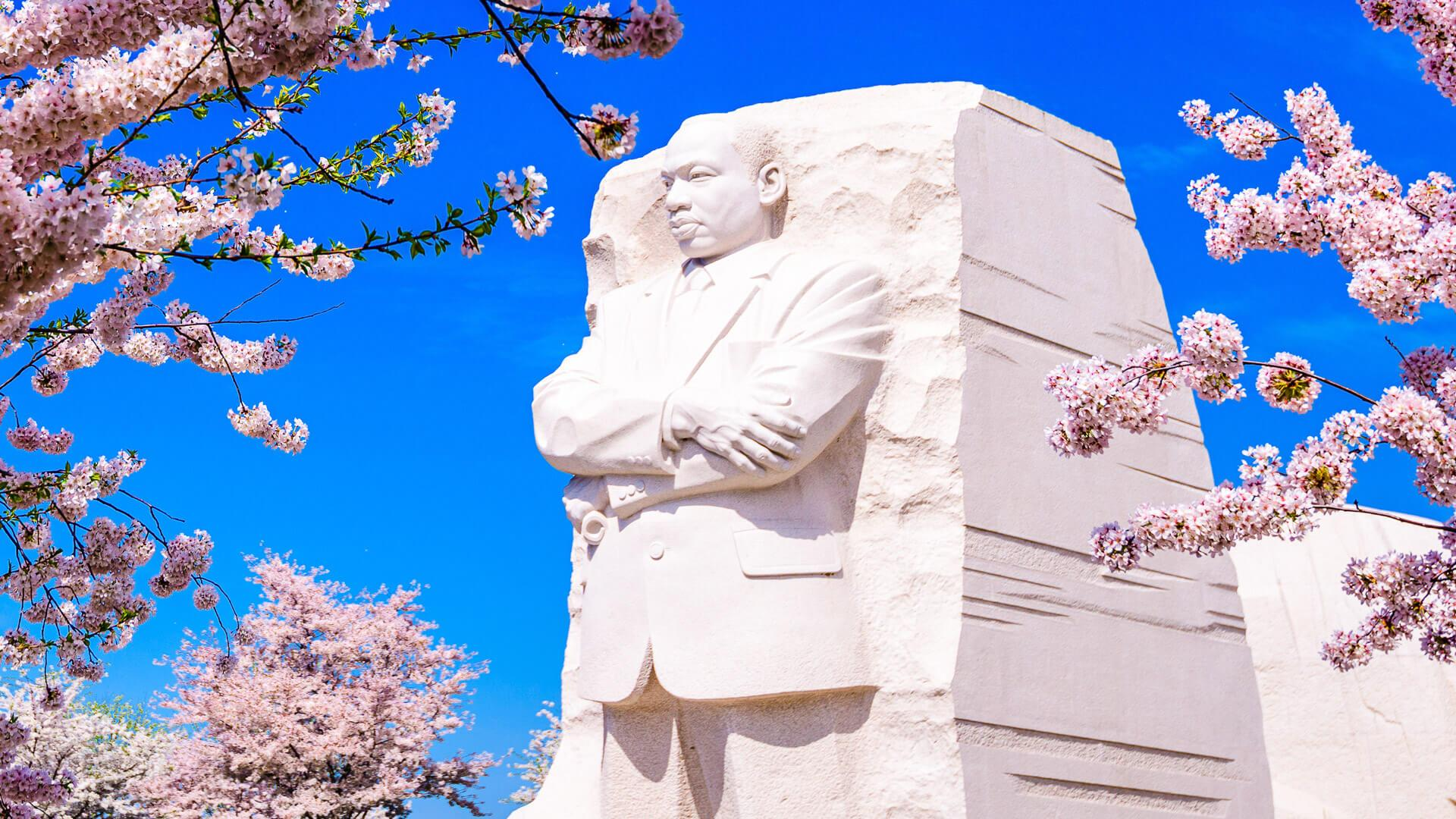 Freebies Discounts And Deals For Martin Luther King Jr Day