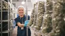 Millennials are snapping up the world's largest publicly traded marijuana company ahead of its earnings report (CGC)