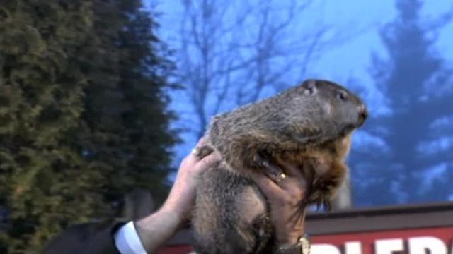 Six more weeks of winter: Punxsutawney Phil
