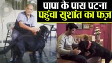 Sushant Singh Rajput's Fudge reaches his father's Patna house, Check out photo