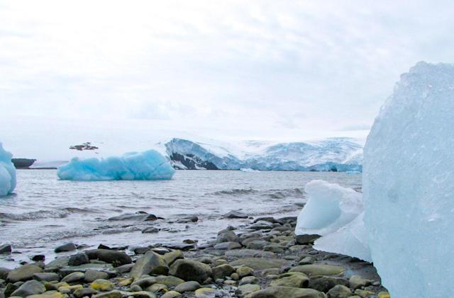 Antarctica's new record high temperature is 63.5 degrees