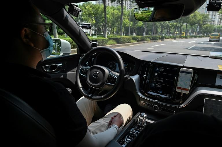 Robotaxis or delivery services are considered ideal for accumulating the driving time and huge data cache needed for cars to 'learn' and become safe enough