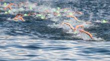 Triathlon - Le triathlon de Hambourg en direct vidéo