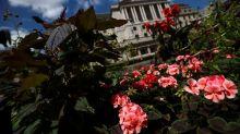BoE's Tenreyro says evidence on negative rates is 'encouraging'