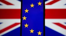 West Ireland EU Parliament Member Talks Brexit Vote Implications