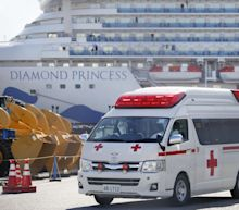 A staggering 542 passengers have been diagnosed with COVID-19 on the quarantined Diamond Princess cruise ship