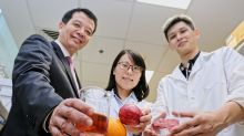 Nanyang Technological University team invents new natural food preservative