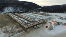 Victoria Gold Appoints VP Exploration and Doubles Camp Capacity at Eagle Gold Project Site, Yukon