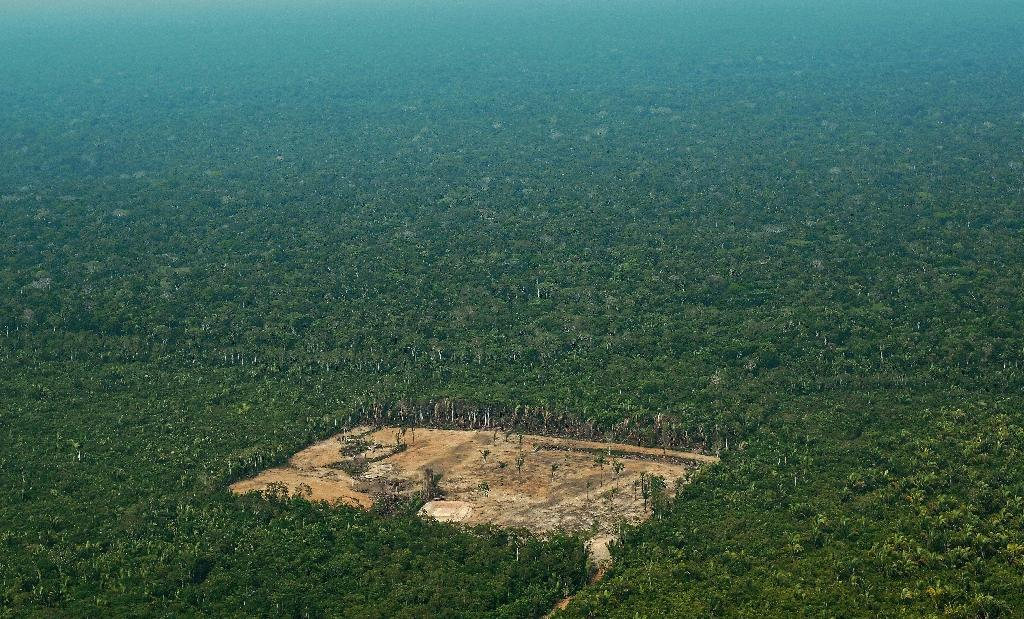A plan to merge the agriculture and environment ministries was seen as a threat to Brazil's natural resources, including the Amazon rainforest (AFP Photo/CARL DE SOUZA)