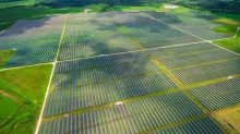U.S. Solar Industry Could Be Decimated If Suniva/SolarWorld Win Trade Case