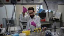 La ciencia brasileña vuelve a mostrar su peso en la lucha contra el coronavirus
