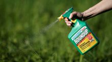 First trial alleging Monsanto's Roundup causes cancer goes to jury