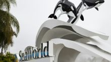 SeaWorld to expand in China after investment deal