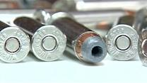 State committee approves ammunition regulation bill