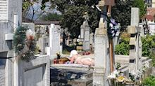 'Just like the beach': Woman pictured sunbathing on grave in cemetery