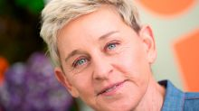 Ellen 'only took responsibility' to save her show expert claims
