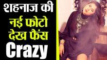 Shehnaz Gill's new photo wins fans heart after Kurta Pajama
