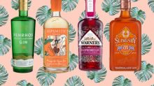 10 best flavoured gins to stock up on, from marmalade to cloudy lemon