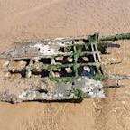 Dog walkers find remains of WWII RAF fighter plane that lay buried on beach for 76 years