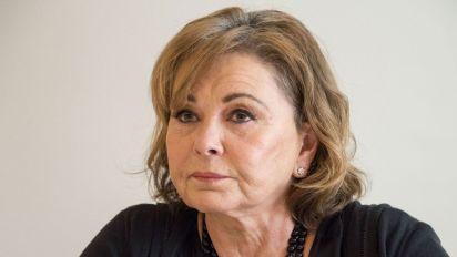 Roseanne Barr: 'I made myself a hate magnet'