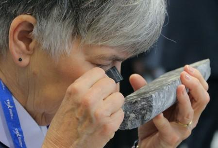 FILE PHOTO: A visitor views a core sample from Barrick Gold mining company's Fourmile Goldrush Camp during the PDAC convention in Toronto