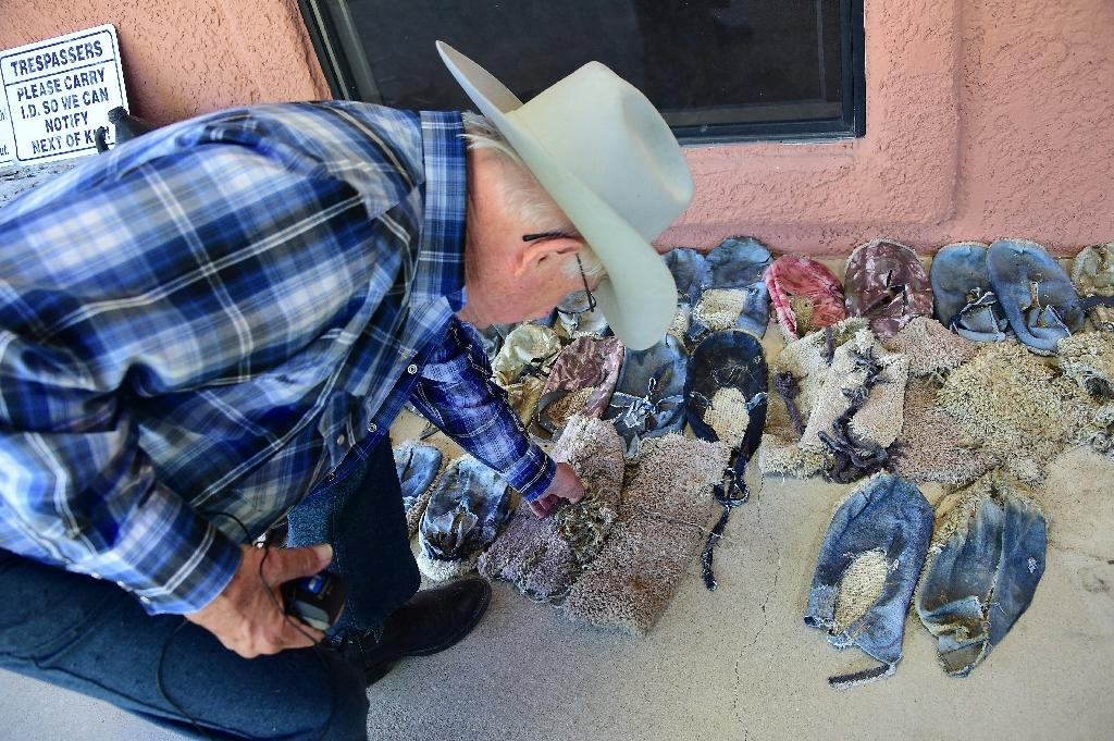 Cattle rancher Jim Chilton shows a display of shoes left behind by migrants on his 50,000 acre ranch southeast of Arivaca, Arizona on the border with Mexico (AFP Photo/Frederic J. Brown)