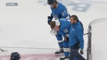 Jets' Bryan Little suffered brain bleed after taking puck to head