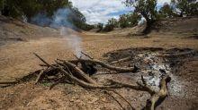Australia afronta una amenaza que preocupa más que el coronavirus: no hay agua
