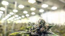 Stock Markets Rebound as Amazon Chases Peloton; High Hopes for Aurora Cannabis