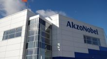 New Akzo Nobel boss pursues $30 billion deal with Axalta
