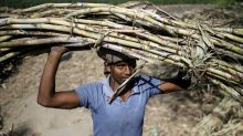 Exclusive - Indian mills sign sugar export deals without government sweetener