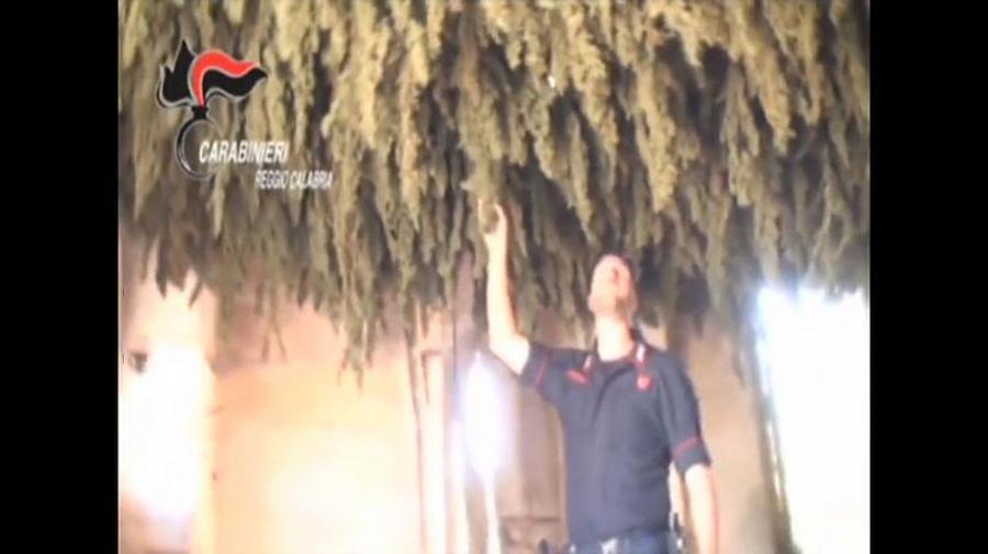 """A Cortina d'Ampezzo si fumava """"erba"""" calabrese"""